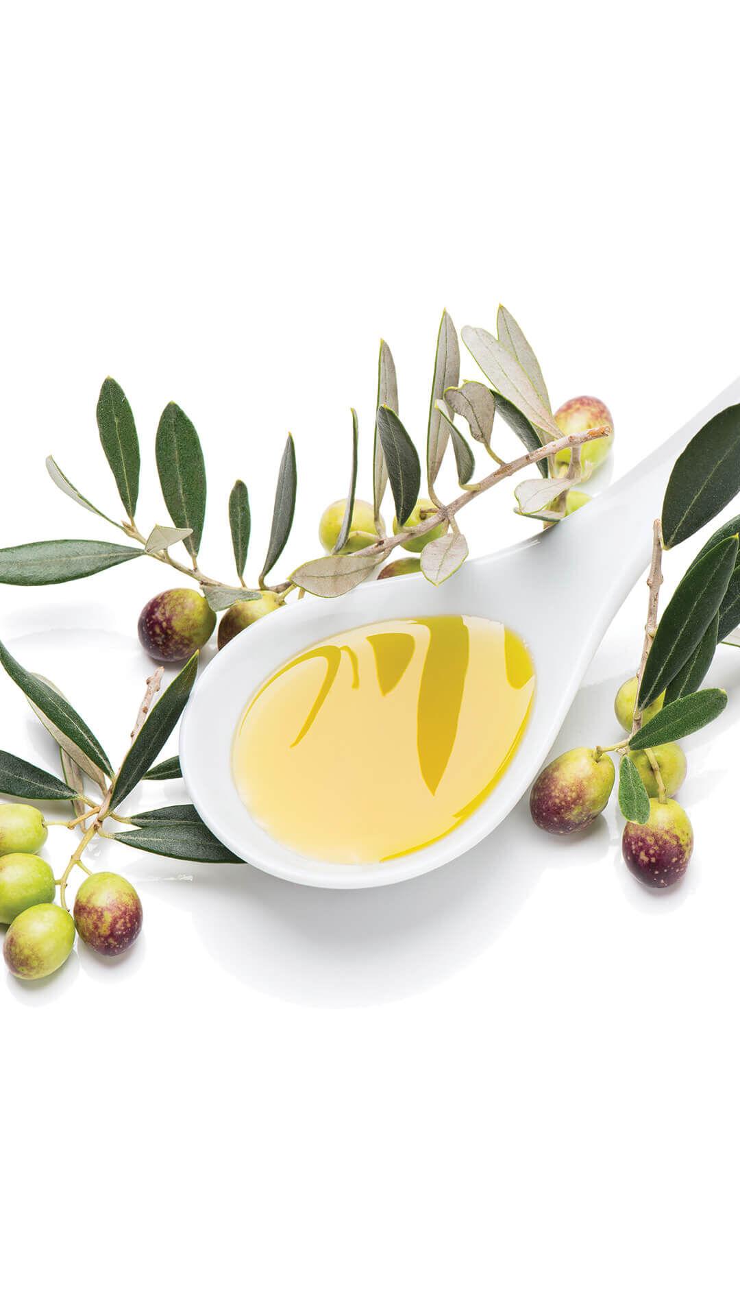 SKA - Salzkekse mit Olivenöl